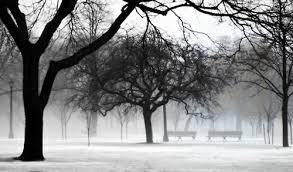trinity winter